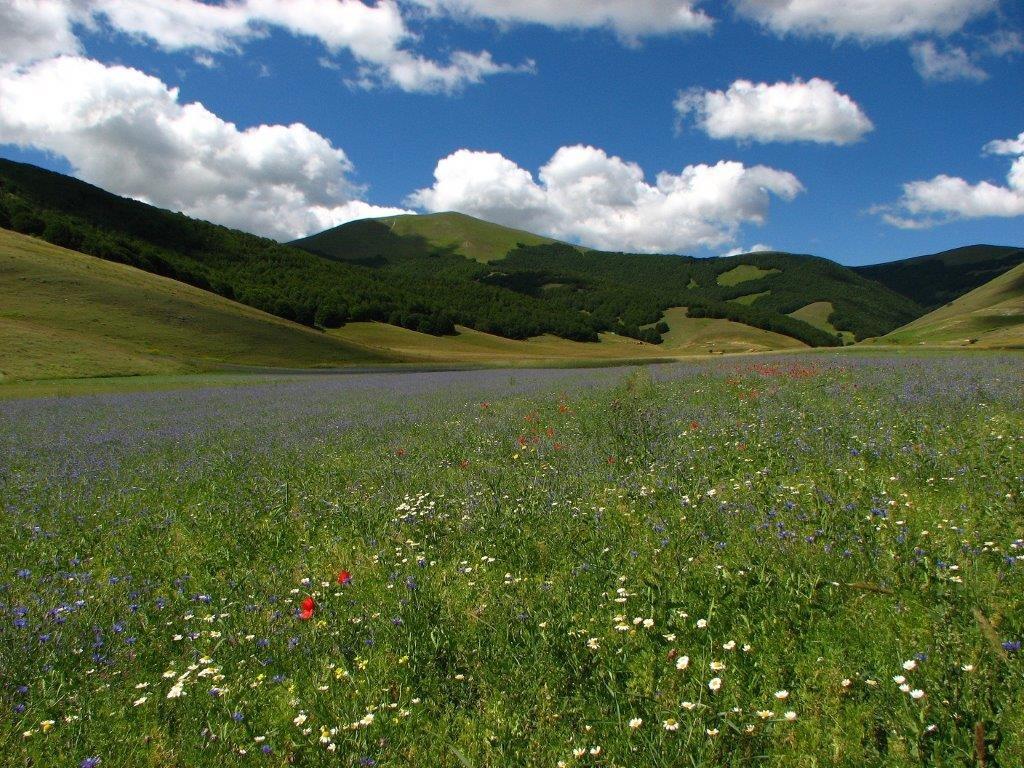 Parco Nazionale dei Marche Sibillini - Marche-Umbria (Foto di Giovanni Dala - 2010)