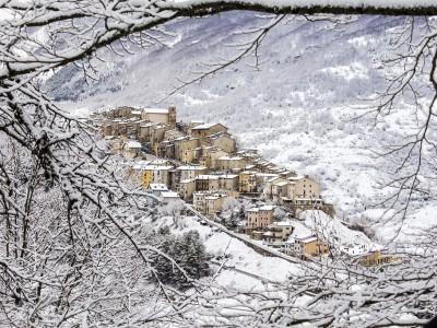 2015 – Saccoccia Luigi – Parco Nazionale d'Abruzzo, Lazio e Molise (1024×683)