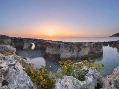 Biasco Maurizio – Parco Naturale Regionale Costa Otranto – S.Maria Leuca – Bosco Tricase (1024×654)