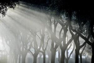 villa-borghese-luce