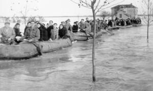 polesine-alluvione-2